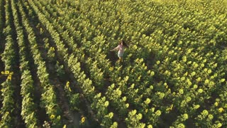 Happy free woman circling in the sunflowers field