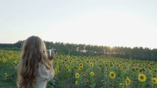 Little girl throws paper airplane in sunflowers field