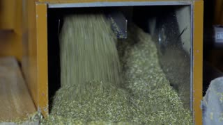 Making herbal tea at factory