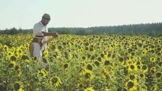 Man and pretty girl walk at the sunflower field