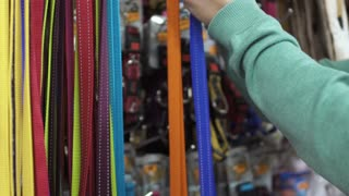 Man choose lead for his dog in the pet shop