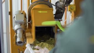 Man shovel herbal tea from machine into bag, tea factory
