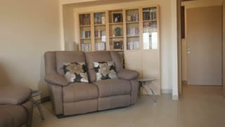 Modern design of living room with sofas and bookcase