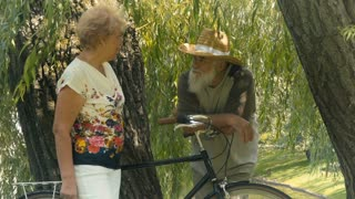 Old woman and old man are talking under the willow in park