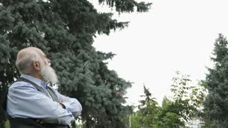 Portrait of handsome gray-haired senior man at tree background