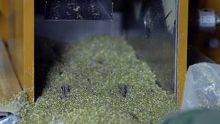 Process of cutting herbal tea