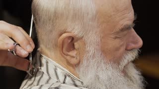 Professional barber cuts gray hair of old man