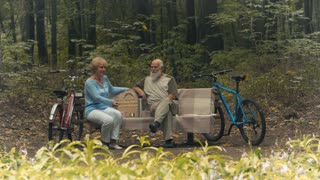 Senior couple and the dog in the park