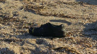 The boot on the seashore