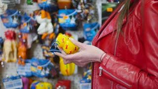 The girl choose the toys for pet in pet-shop