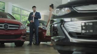 The salesman and woman talks about cars in car dealership