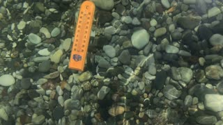 Thermometer measures the temperature of seawater