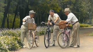 Three elderly friends with bicycles are talking in the park