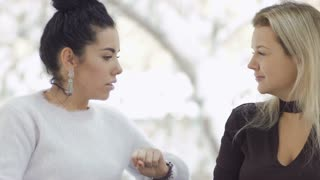 Two pretty businesswomen has a conversation