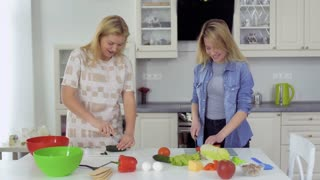 Two pretty girls cuts vegetables for salad at the kitchen