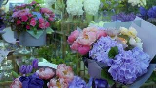Variety of flowers in flower shop