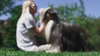 Woman caress her dog sitting on grass