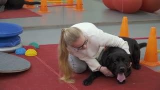 Young girl hugs happy black labrador