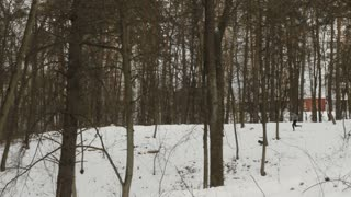 Young man runs among the trees in winter forest