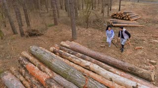 Young people runs on the logs in the forest