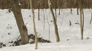 Young sportsman runs in winter forest