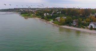 4k Goose Flock Aerial Lake Michigan