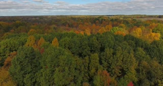 Fall Colors Aerial Flyover Circle
