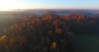 Fall Colors Foggy Morning Aerial