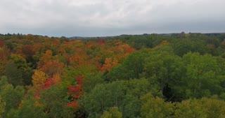 Michigan Aerial Fall Color Flyover