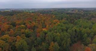 Michigan Aerial Fall Color High Flyover