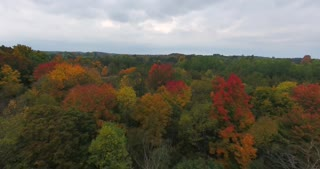Michigan Aerial Fall Color Pull Back
