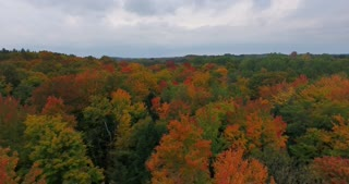 Michigan Aerial Fall Color Side Shot