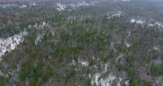 Michigan Winter Forest Aerial Pull Back