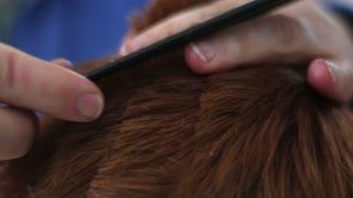 4K Haircut Red Hair Scissors Cutting