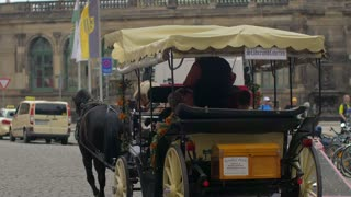 4k Horse Pulling Carriage German Streets Europe Harnessed Dresden Castle Germany Tourism Frauenkirche Wagon