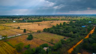 Aerial Dry Rice Paddy Cambodian Landscape Asian Sunset Landscape Jungle Cinematic Flyover Drone