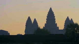 Angkor Wat Temple Ruins Morning Ambiance Monkeys Swifts Birds Siem Reap Cambodia Birds 4K