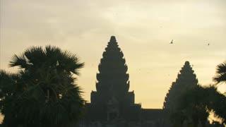Beautiful Swifts Flying At Angkor Wat Temple Siem Reap Cambodia Birds 4K
