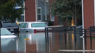 Flooding Victim Helpless Cars Disaster Destruction Hurricane Flood Relief