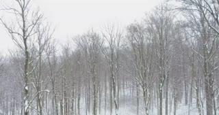 Winter Snowfall Aerial