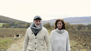 Beautiful senior woman and man on a walk in colorful autumn nature, holding hands, talking.