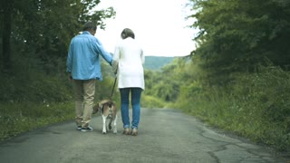 Beautiful senior woman and man on a walk with their dog in green summer nature, rear view.