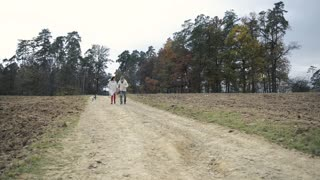 Beautiful senior woman and man on a walk with their dog, running in colorful autumn nature.