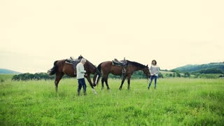A happy senior couple holding horses grazing on a pasture. Slow motion.