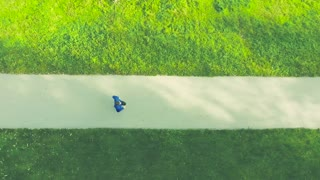 Aerial view of young athlete in blue jacket running outside in colorful sunny autumn nature on an asphalt path leading through green grass. Trail runner training for cross country running.