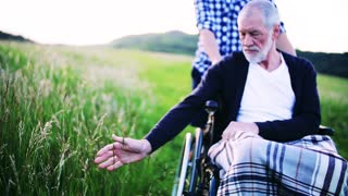 An unrecognizable adult son with his senior father in wheelchair on a walk on a meadow in nature, a blanket on his knees. Slow motion. Copy space.