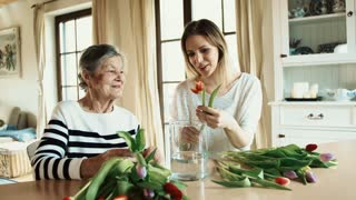 Portrait of an elderly grandmother with an adult granddaughter at home. Women putting flowers in a vase.