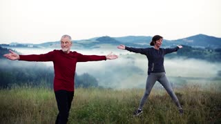 Senior couple runners stretching on meadow outdoor in foggy morning in nature. Slow motion.