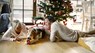 Senior couple with dog and presents at Christmas time.