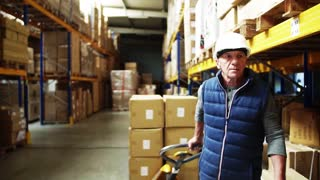 Senior male warehouse worker pulling a pallet truck with boxes. A forklift truck in the background. Copy space. Slow motion.